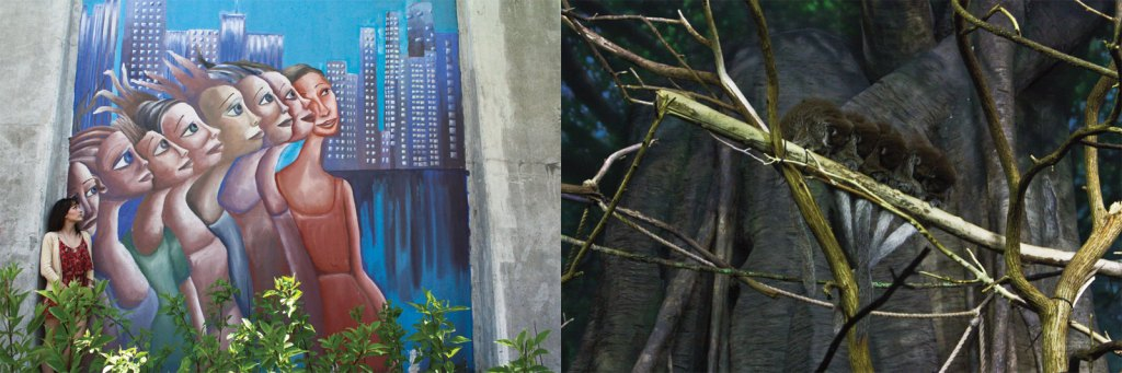 Chicago zoo and street art comparisons